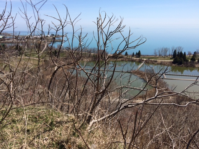 The view from the top of Scarborough Bluffs. There is a large conservation area down there, and a splendid beach.