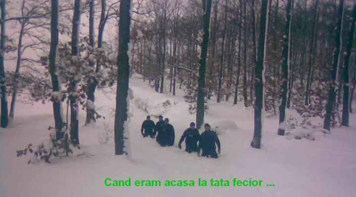 Ioan Sabadus == click pe poza pentru link la blog == facebook.com/albinuta.veninoasa