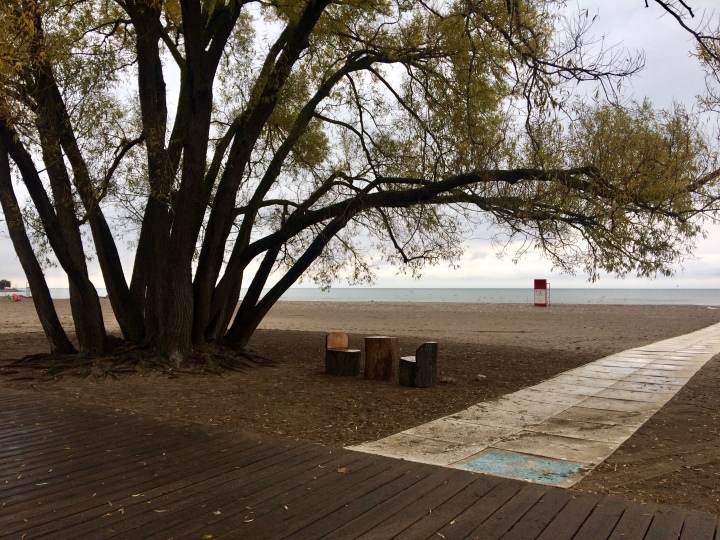 The Beaches, Toronto, late October 2018 – Canadian immigrant